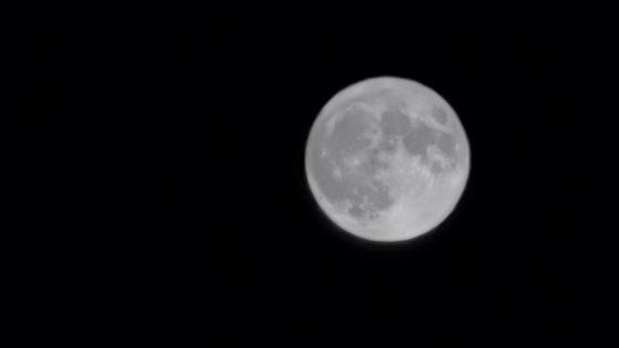 月亮 wallpaper