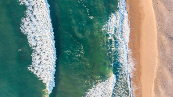Beach drone view wallpaper