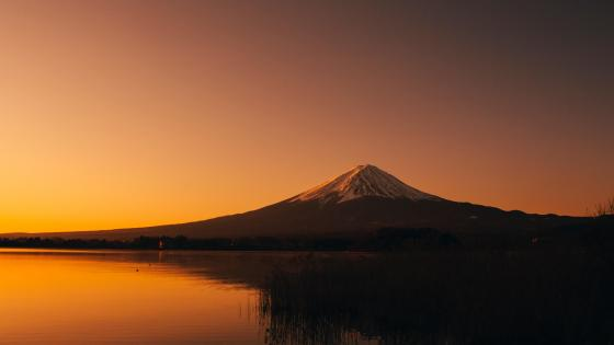 Lake Kawaguchi and Mount Fuji wallpaper