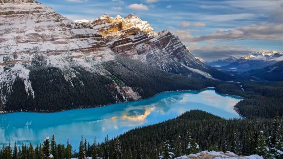 Peyto Lake, Alberta, Canada wallpaper