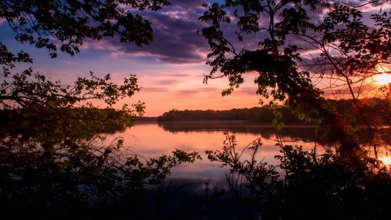 Sunset Scene wallpaper