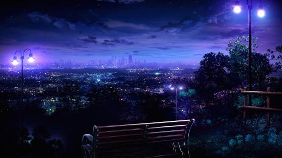 Bench In Front Of The City At Night wallpaper