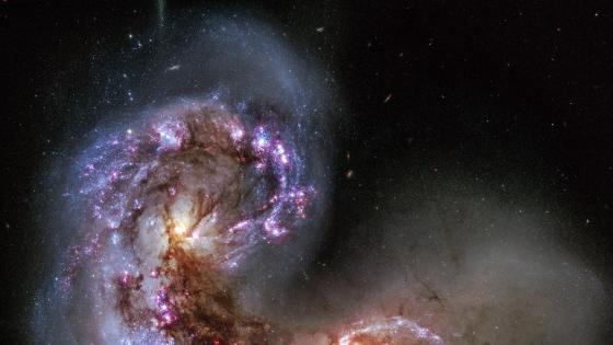 NGC 4038 of the Antennae Galaxies wallpaper