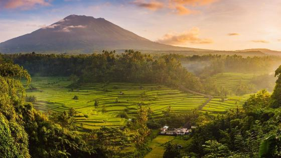 Sidemen valley, Rendang, Karangasem Regency, Bali, Indonesia wallpaper