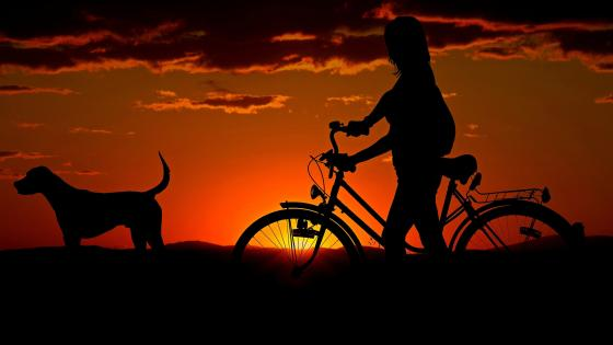 Girl On Bicycle At Sunset With Her Dog wallpaper