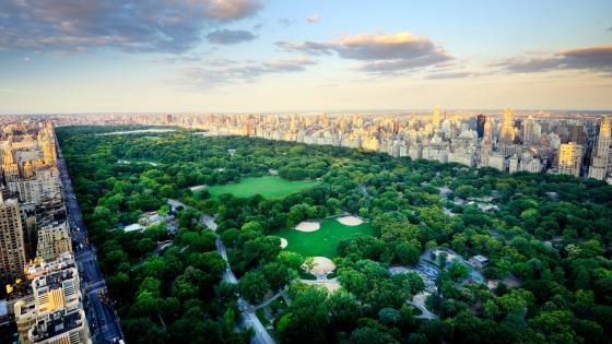 Central Park from above wallpaper