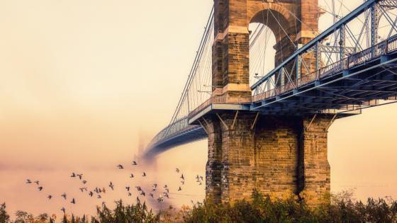 John A. Roebling Suspension Bridge wallpaper