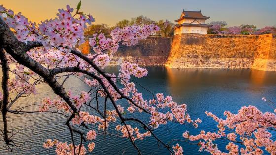 Osaka Castle Park wallpaper