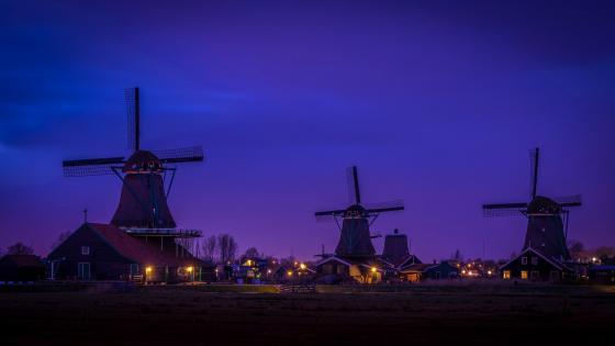 Zaanse Schans windmills wallpaper