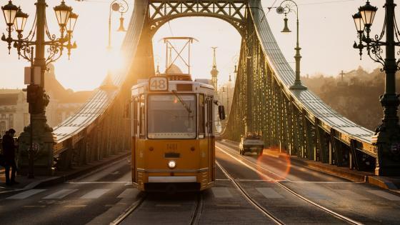 Tram on Liberty Bridge, Budapest wallpaper