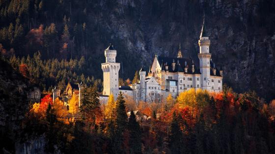 Neuschwanstein Castle at fall wallpaper