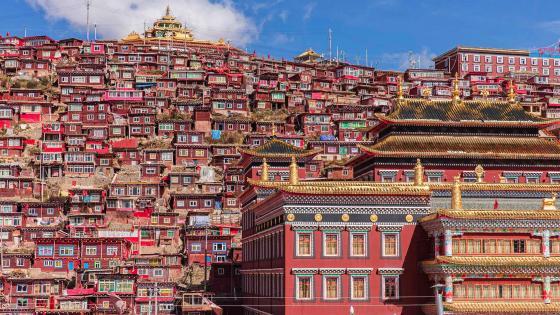 Seda Monastery Tibetan Buddhist school wallpaper