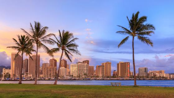 Hawaii Sands Realty wallpaper