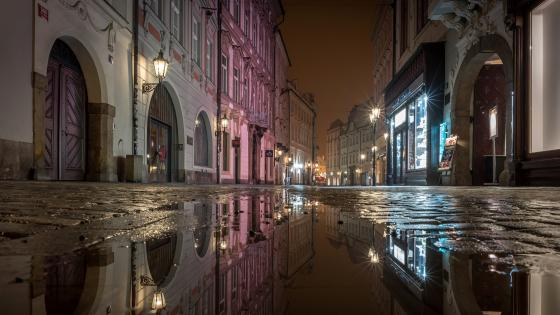 Street of Prague puddle reflection wallpaper