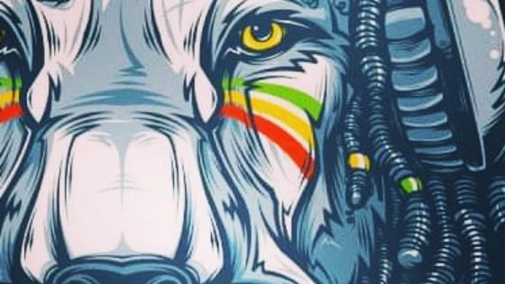 Reggae lion wallpaper