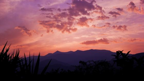 Purple mountains wallpaper