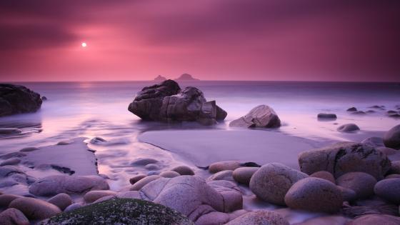 Purple-pink sunset wallpaper