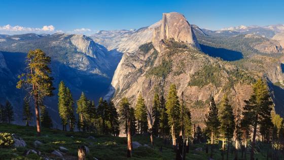 Yosemite National Park, Half Dome wallpaper