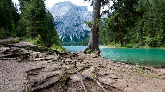 Lago Di Braies, Italy wallpaper