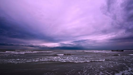 Purple seascape from Iran wallpaper