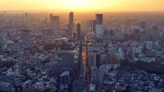 View of Route 3 (Shuto Expressway) from Roppongi Hills Mori Tower in Tokyo wallpaper