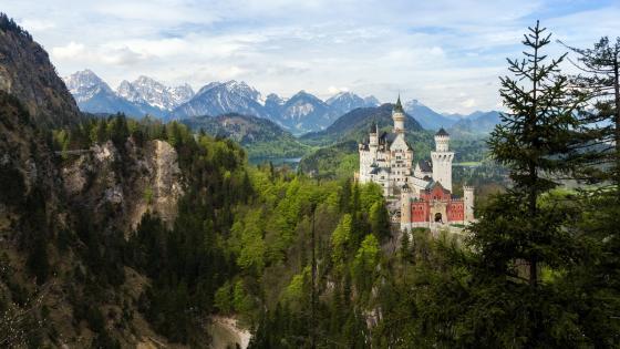 Neuschwanstein Castle, Germany wallpaper