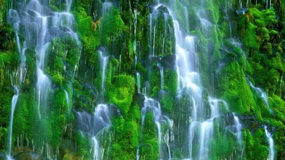 Itatiaia National Park, Véu de Noiva Waterfall wallpaper