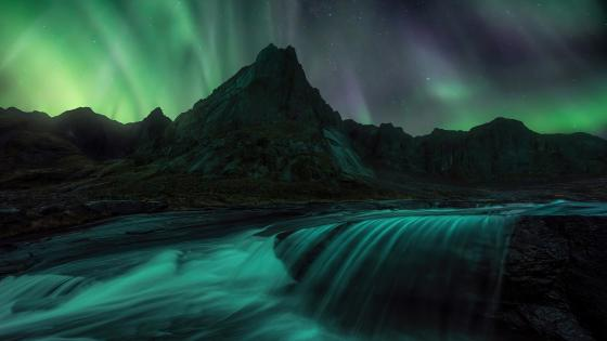 Lofoten polar lights wallpaper