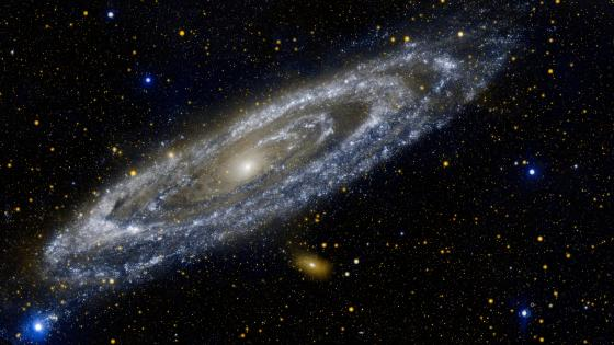 GALEX Image of the Andromeda Galaxy wallpaper