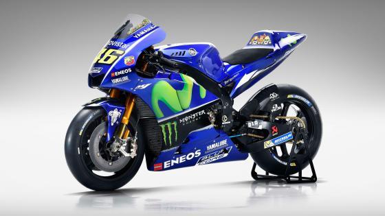 Yamaha MotoGP racing wallpaper