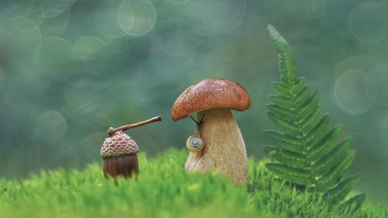 Miniature nature wallpaper
