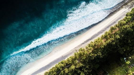 Tropical beach from above wallpaper