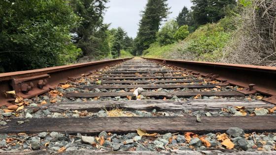 West coast rail wallpaper