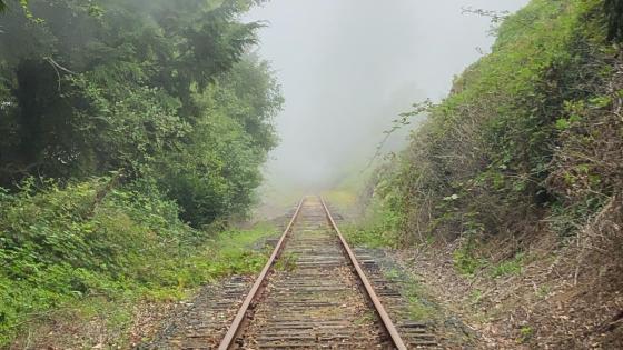 West coast rail foggy wallpaper