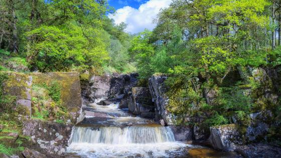 Loch Lomond and The Trossachs National Park wallpaper