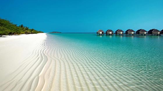 Overwater Bungalows On The Beautiful Seashore wallpaper