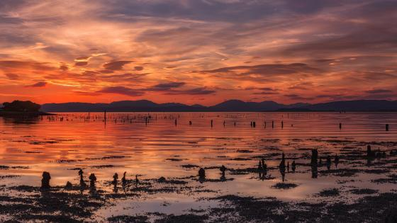 Clyde River at sunset wallpaper