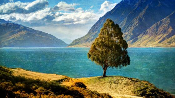 Tree by the lake wallpaper