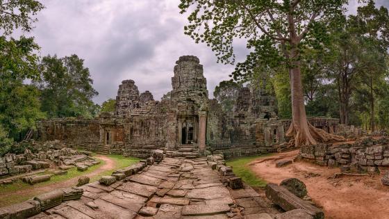 Cambodia temple ruins wallpaper