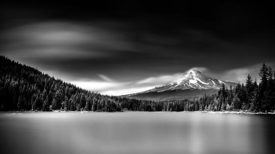 Mount Hood from Trillium Lake wallpaper