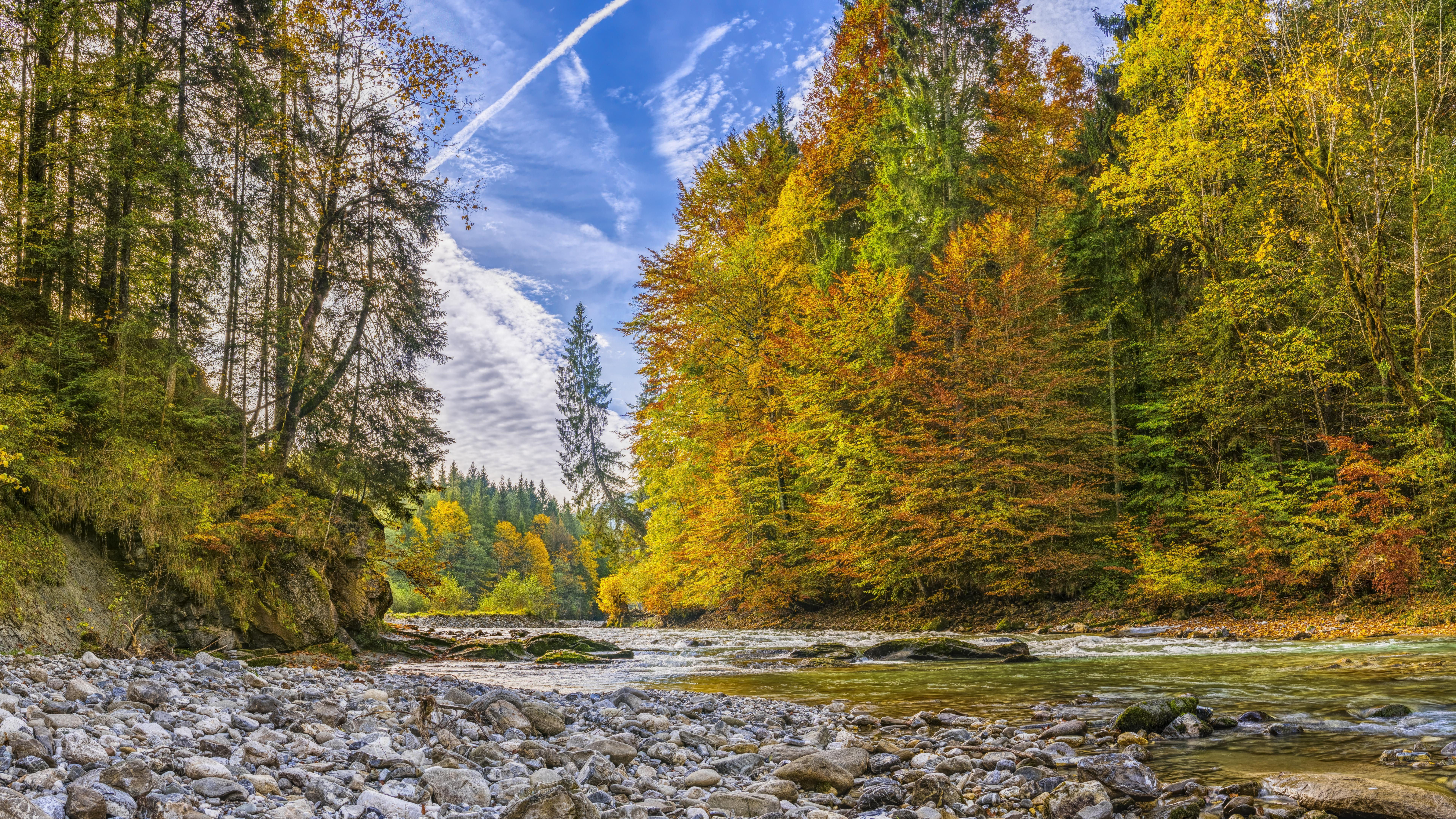 River In Autumn Forest 8k Ultrahd Wallpaper Backiee
