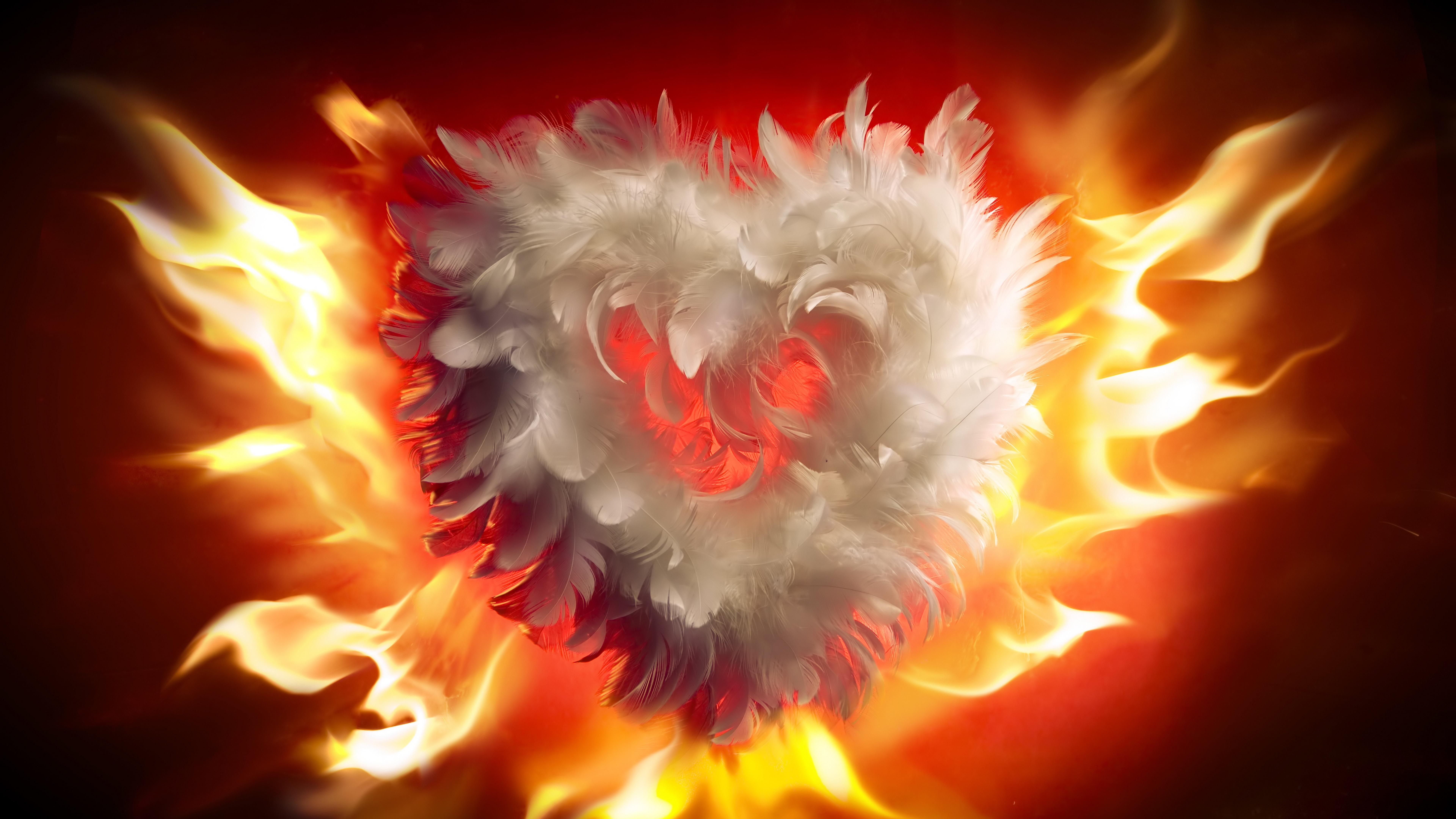 Feather heart in flames wallpaper